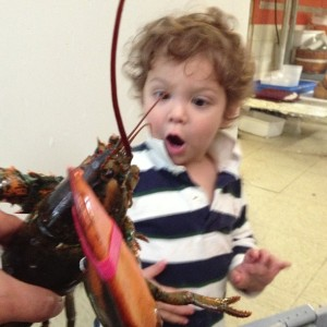 Our lobster specials are great but don't ask Blake.